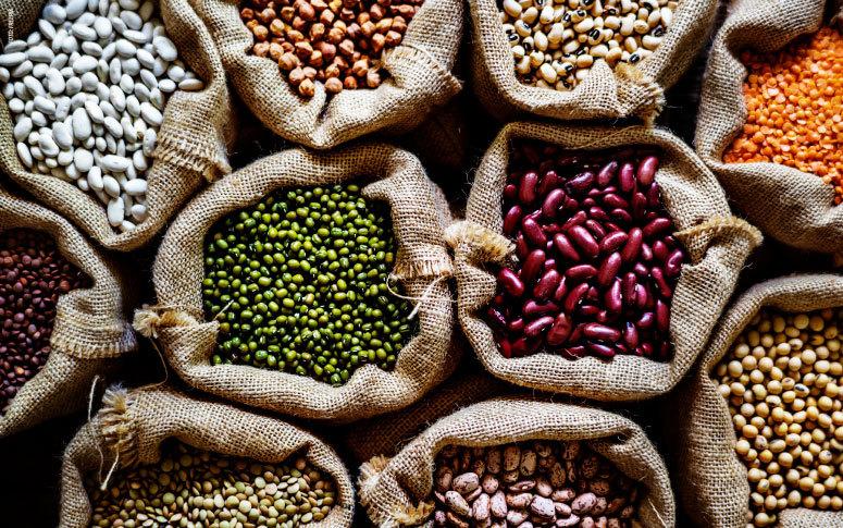 Expectativa é de crescimento da safra de grãos em 7,55% e produção deve chegar a 693.116 toneladas